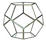 14'' Contemporary Table Top Glass Geodesic Terrarium with Double Hinged Doors