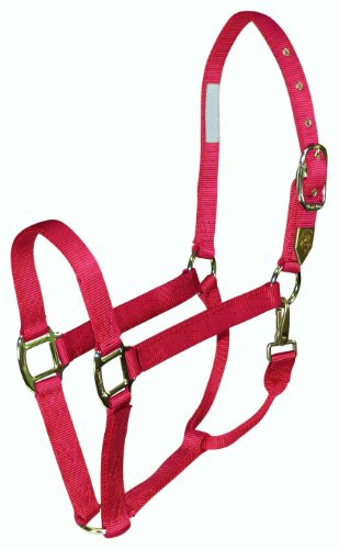 hamilton-1-horse-halter-with-snap-average-size-800-1100-lbs-raspberry