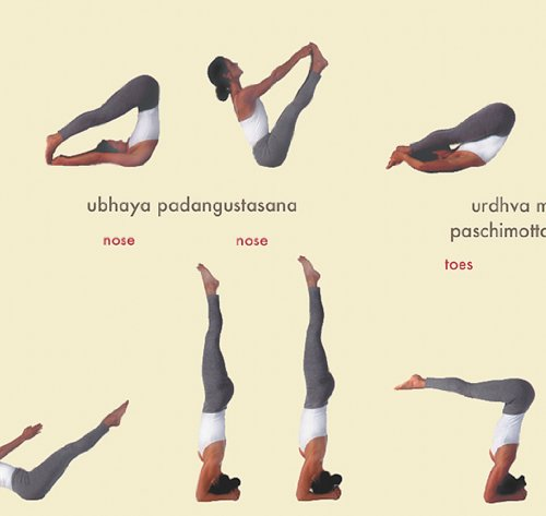 ashtanga yoga primary series chart pdf