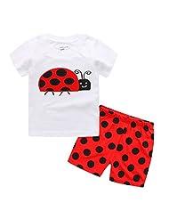 Captain Meow Boys' Short Sleeve Clothing Set T-shirt And Short Pants Ladybug