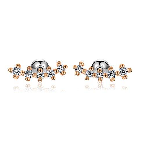 18g Stainless Steel 5 stone cubic zirconia Cartilage Piercing Earrings Inner Conch Stud Sleeper Earrings 2Pieces(Rose gold)