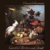 EXOTIC BIRDS AND FRUIT [LP VINYL]