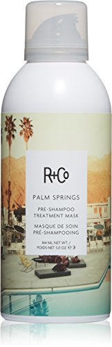Price comparison product image R+Co Palm Springs Pre-Shampoo Treatment Masque, 5 oz.