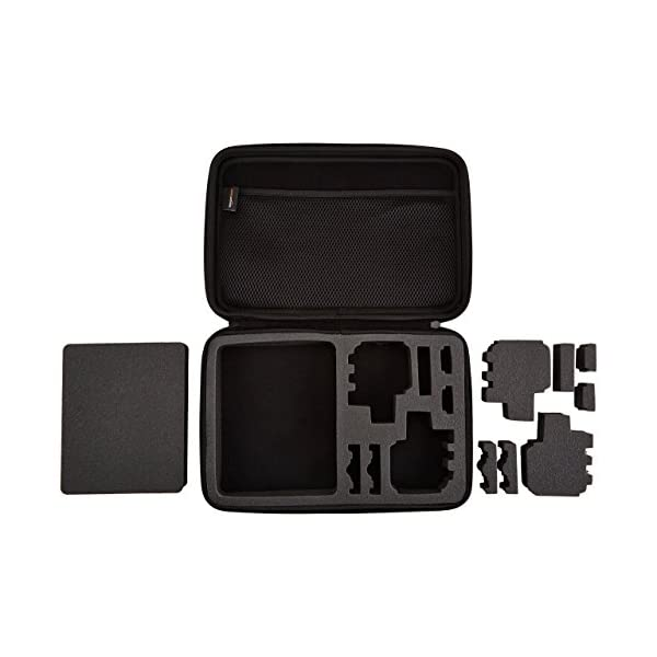 Amazon Basics - Custodia per trasporto GoPro, misura Large 4 spesavip