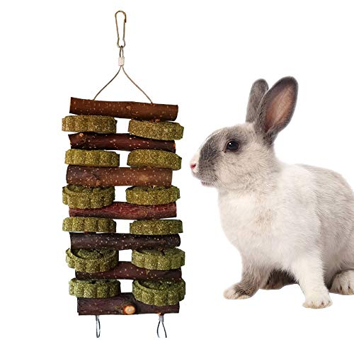 - Chinchilla Treats, Bunny Chew Toys for Teeth Hanging Natural Apple Wood Branches Organic Apple Wood Chewing Sticks Natural Branches for Rodents Rats Guinea Pigs Hamsters Rabbits Squirrels and Gerbils