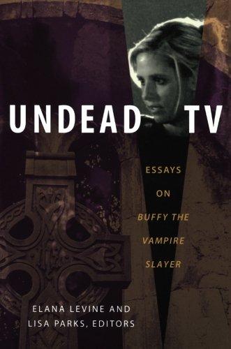 essays on tv