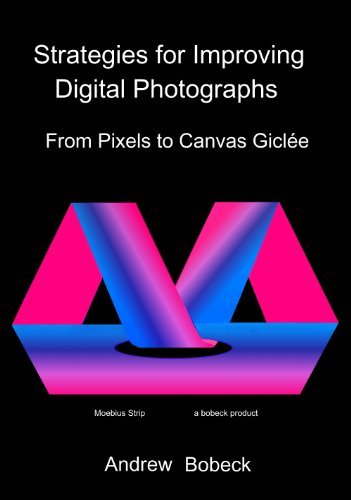 Strategies for Improving Digital Photographs: From Pixels to Canvas Giclee by Andrew Bobeck (2012-08-29)