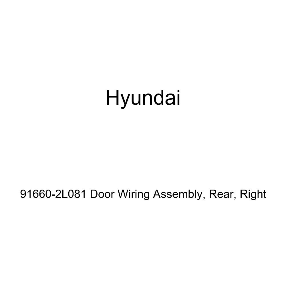 Rear Right Genuine Hyundai 91660-2L081 Door Wiring Assembly