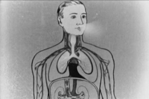 Vintage Choking (Asphyxiation) First Aid Video: Artificial Respiration DVD (1927)