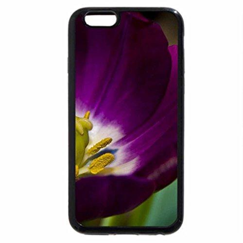 iPhone 6S / iPhone 6 Case (Black) Beautiful_purple_flower