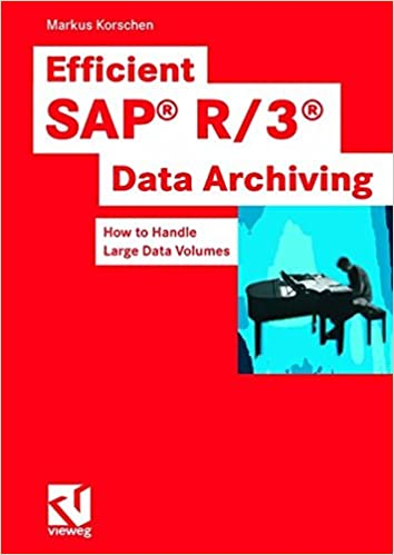 Efficient SAP R/3-Data Archiving: How to Handle Large Data