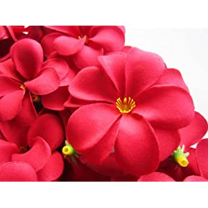 "(12) Red Hawaiian Plumeria Frangipani Silk Flower Heads - 3"" - Artificial Flowers Head Fabric Floral Supplies Wholesale Lot for Wedding Flowers Accessories Make Bridal Hair Clips Headbands Dress 38"