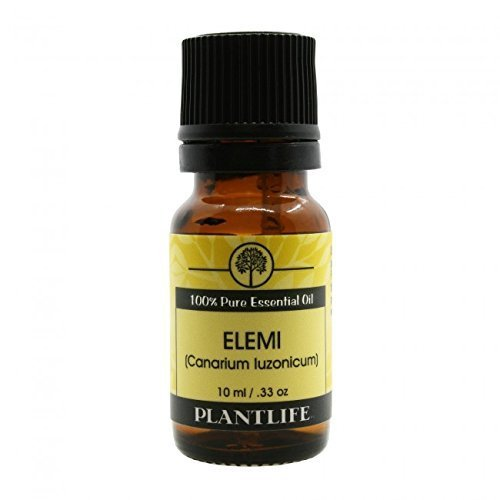Elemi 100% Pure Essential Oil - 10 ml (Embalming Table compare prices)
