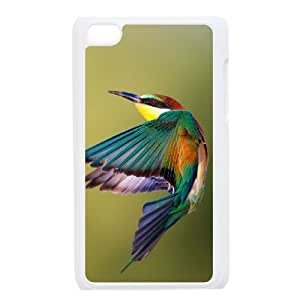 GRTT Phone Case Hummingbird Bumper Plastic Customized Case FOR Ipod Touch 4