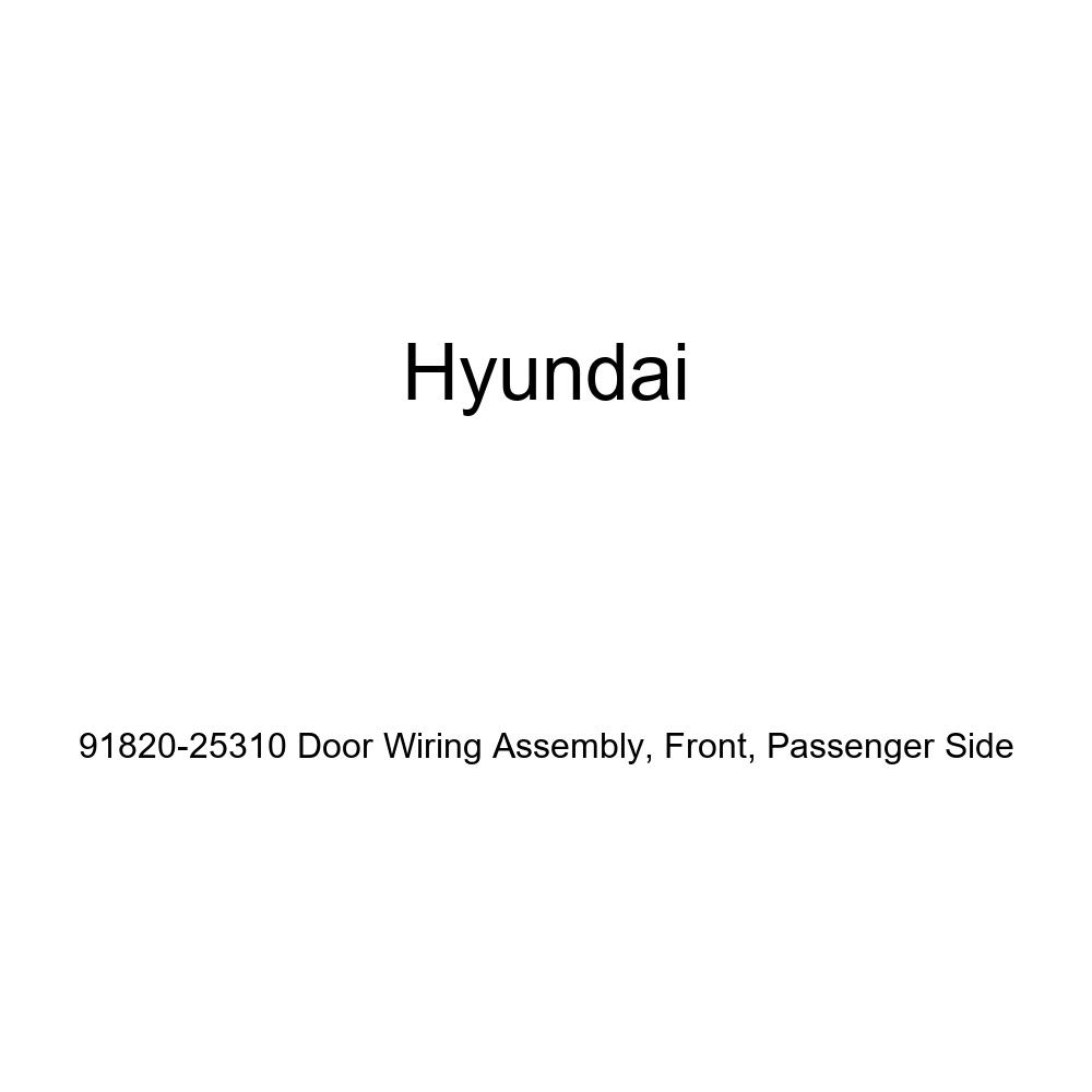 Front Passenger Side Genuine Hyundai 91820-25310 Door Wiring Assembly