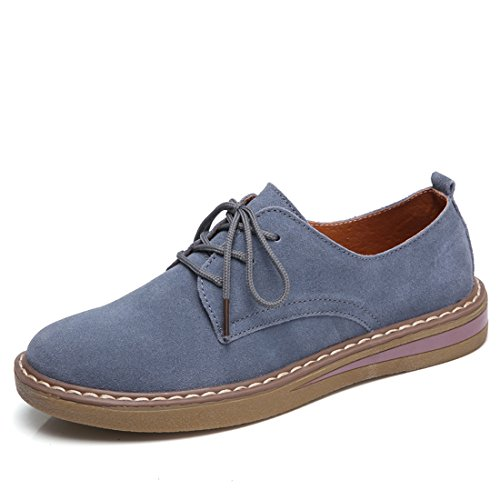 Z Oxford Blue Faux SUO Lace Classic Women Shoe Up Flat Suede aaqrw