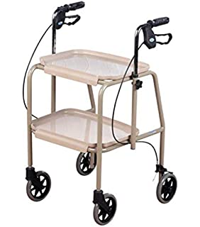 Amazon.com: Carrito andador con dos bandejas: Health ...