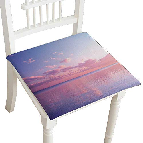Indoor/Outdoor All Weather Chair Pads Twilight Dusk Seat Cushions Garden Patio Home Chair Cushions 28