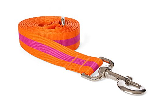 fabdog Classic Stripe Dog Lead, Eco-Friendly Dog Leash (Pink, Large)