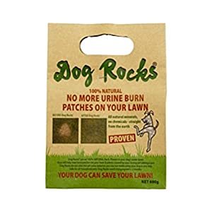 Dog Rocks – All Natural Grass Burn Solution for Dogs Prevents Lawn Urine Stains – 600 Gram Box (1 Pack)