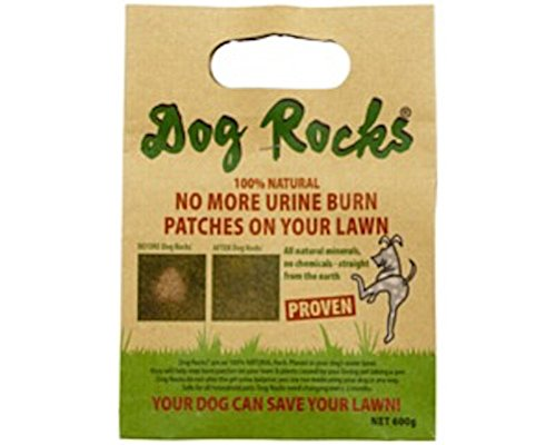 - Dog Rocks - All Natural Grass Burn Solution for Dogs Prevents Lawn Urine Stains - 600 Gram Box (1 Pack)