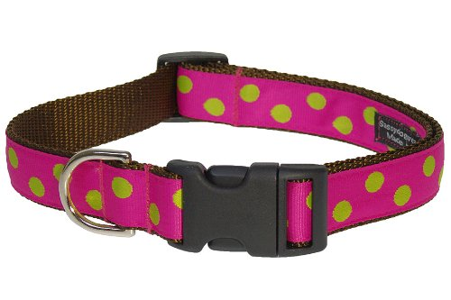 Sassy Dog Wear 13-20-Inch Fuchsia/Lime Dot Dog Collar, Medium