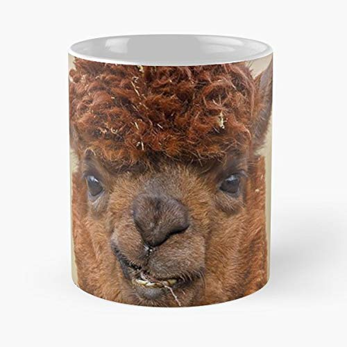 Alpaca 2018 2017 Best Selling - 11 Oz Coffee Mugs Unique Ceramic Novelty Cup, The Best Gift For Holidays. (Popular Dinnerware 2017)