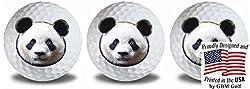 Wild Animal Panda Golf Balls 3 Pack By Gbm Golf