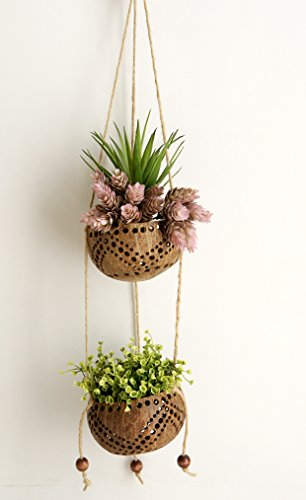 Plawanature 2 Tier Perforated Coconut Shell Hanging Planter Pot. Diameter 4 (Elegance Planters)
