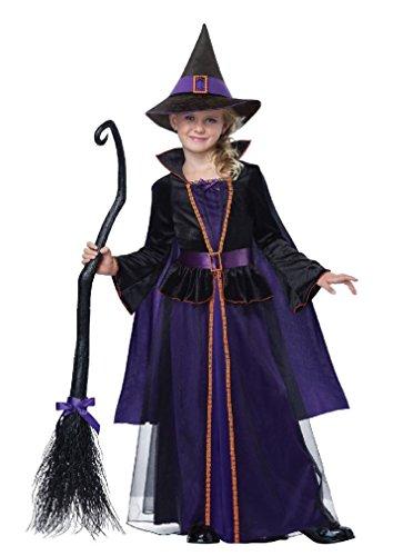 Fancy Hocus Pocus Witch Girls Child Costume (Hocus Pocus Witch Childrens Costume)