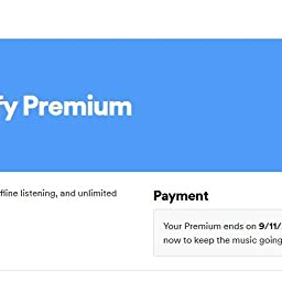 Spotify Premium 3 Month Subscription 30 Gift Card Email Delivery