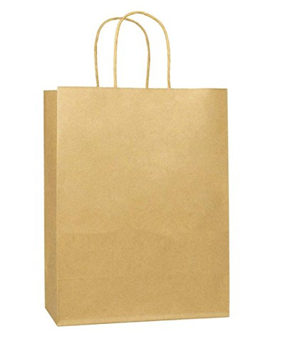 BagDream 10''x5''x13'' - 25Pcs Brown Kraft Paper Bags, Shopping, Debbie, Mechandise, Retail, Party, Gift Bags, 100% Recycled Paper by BagDream