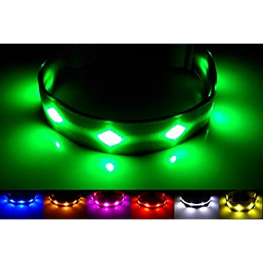 NEW - GoDoggie-GLOW - USB Rechargeable LED Dog Safety Collar - 6 Colours & 3 Sizes - Intro Offer - Super-Bright LED's Glow & Flash - Connects to Devices to Recharge - No Batteries Required - Great Fun & Improved Dog Safety - Green Large