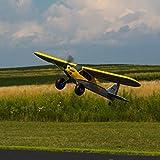 HobbyZone RC Airplane Carbon Cub S 2 1.3m BNF Basic
