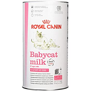 Amazon Com Royal Canin Baby Cat Milk 300 G Pet Supplies