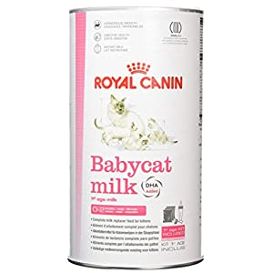 Royal Canin C-58410 Baby Leche Gato – 300 gr