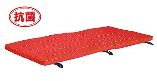 優れた品質 抗菌国産カラーマット[WILD FIT B01KNNBI2W ワイルドフィット] 赤 赤 B01KNNBI2W, フウレンチョウ:4bd421d2 --- mail.mrplusfm.net