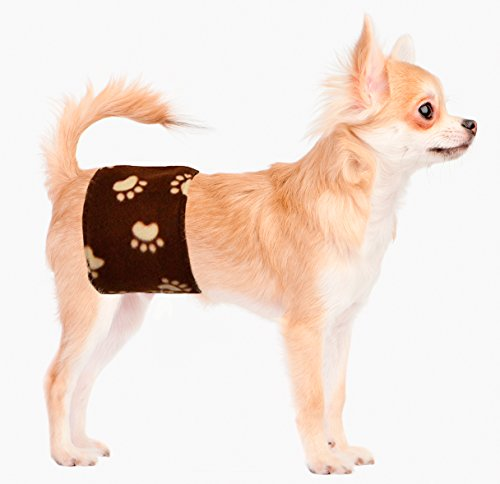 Pictures of Cuddle Bands Premium Belly BandMale Dog Training 2