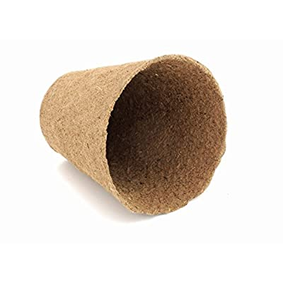 Daniel's Plants Large Peat Pots | Plantable Pots for Starting Seeds Herbs Vegetables & Tomato Seedlings | Organic Biodegradable Eco Friendly | Bonus 10 Plant Labels | Bulk 30 Pack 4 Inch Round: Garden & Outdoor