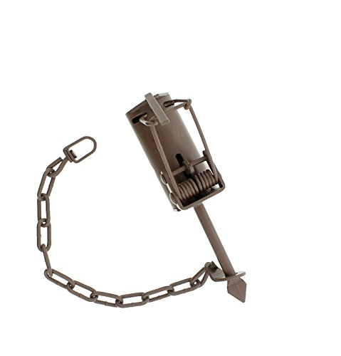 Duke Dog-Proof DP Traps Animal Leg Trap – For Raccoon, possum, skunk Trapping By Fox Pro Snares LLC (12) by Fox Pro Snares LLC