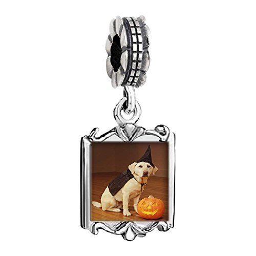 [dog Halloween costume pumpkin Photo Family Mom & Baby Girl & Dad Dangle Bead Charm Bracelet] (Family Halloween Costumes With Baby And Dog)