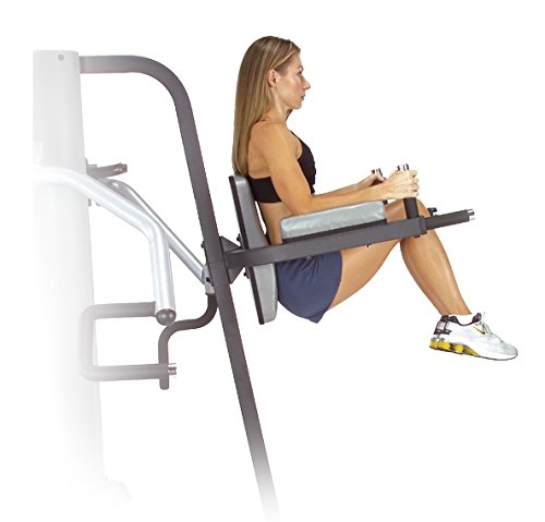 Vertical Knee Raise and Dip Station by Body-Solid