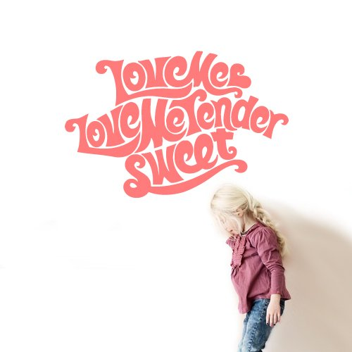Wall Vinyl Decal Sticker Decal Words Sign Quote Love Me Tender Sweet z2952 Tender Decal
