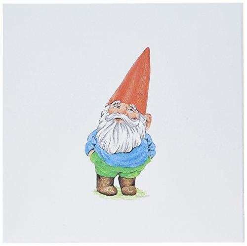 3dRose Set of 12 Greeting Cards, Garden Gnome Cartoon (gc_123988_2) ()