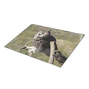 BaLaBala Owl Picture Custom Doormat