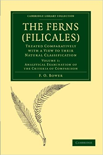 Book The Ferns (Filicales): Treated Comparatively with a View to their Natural Classification Volume 1 (Cambridge Library Collection - Botany and Horticulture)