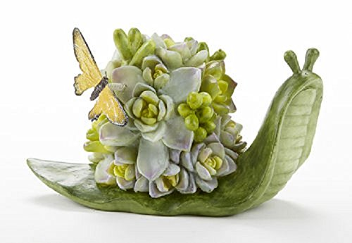 Snail with Succulent Shell Butterfly 8 x 6 Inch Resin Fairy Garden - Sibling Designer