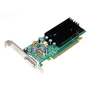 Tarjeta gráfica DELL NVIDIA P383 0dh261 Quadro NVS285 128 MB ...