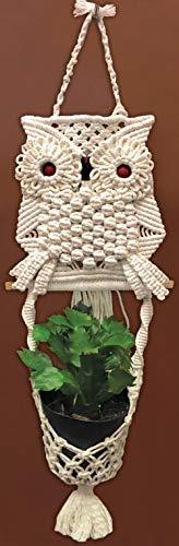 Design Works Crafts DWC4465 Zen Mac Kit Owl Planter ()