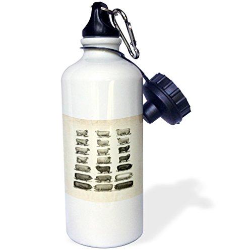 3dRose wb_80428_1' Vintage Pigs N Sheep Sports Botella de agua, 59 g, Natural